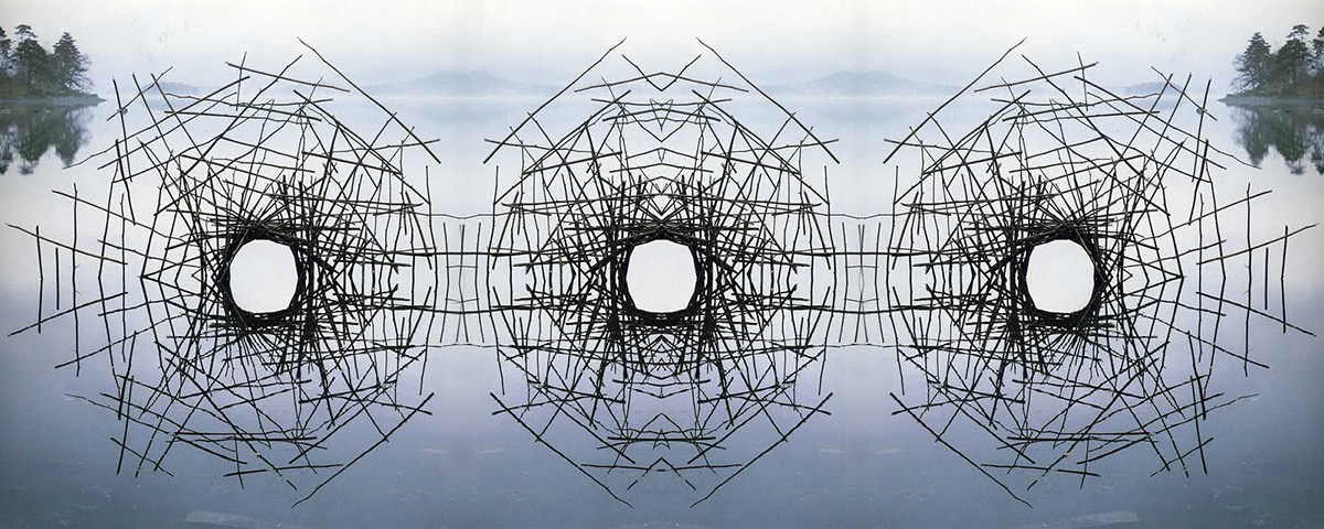 Sticks Framing a Lake / Andy Goldsworthy